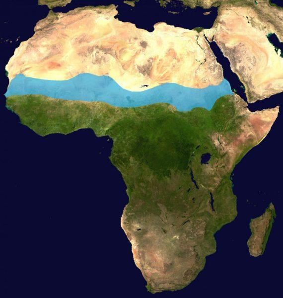 Der blau markierte Bereich zeigt die Lage der Sahelzone in Afrika