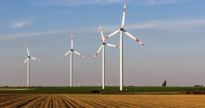 Windräder: Erneuerbare Energien werden bei der Stromerzeugung immer wichtiger.