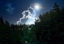 Außerirdischer und ein UFO über dem Wald
