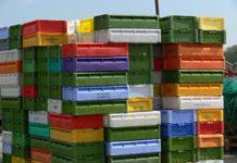 Behälterreinigung: Plastik Boxen in der Lebensmittelindustrie