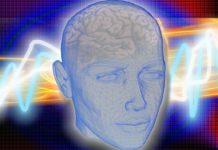 Neuronale Plastizität: Gehirn im Kopf mit Neuronen