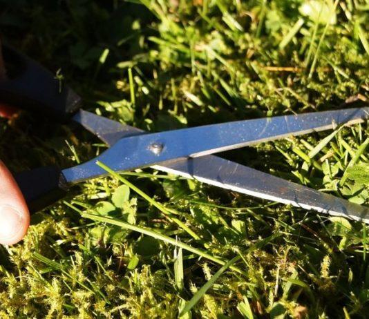 Gras schneiden mit einer Schere