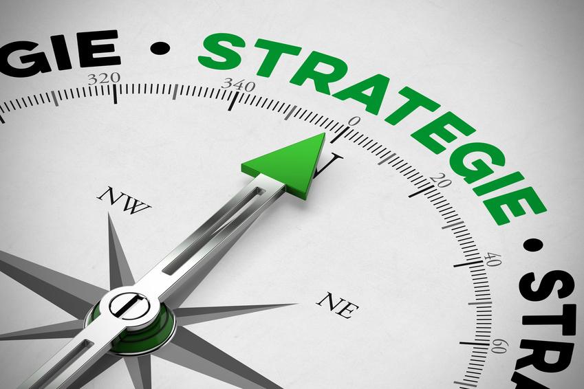 Business Strategie fr Nachhaltigkeit
