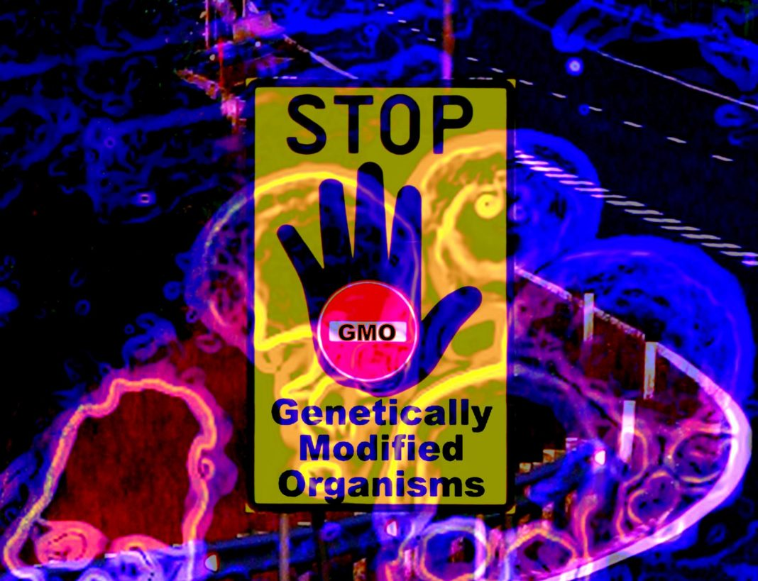 Stop genetically modified organism