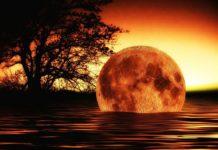 Klimaerwärmung -das Ende der Welt?