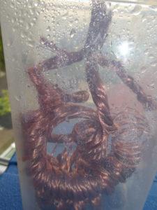 Kupferspule im Wasser