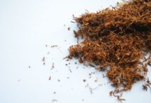 Tabak, Nikotin