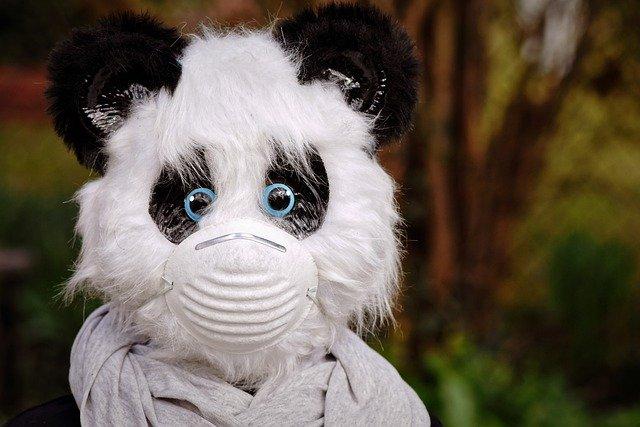 Maskenpflicht auch für Stofftiere?